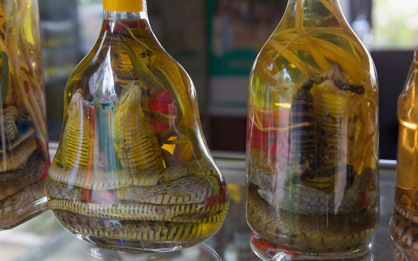 Food You Need To Try Before You Die: Snake Wine