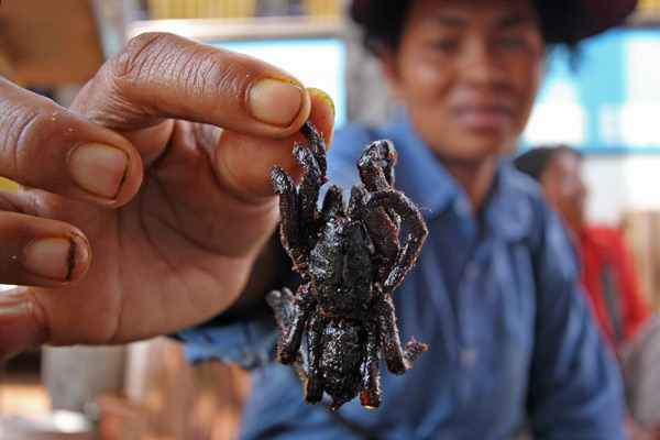 Food You Need To Try Before You Die: Fried Spiders