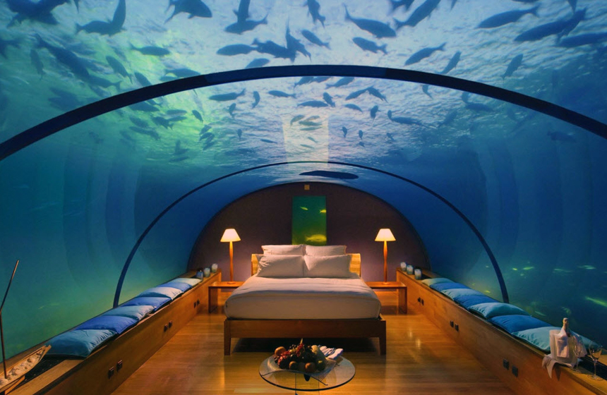 Most expensive fish tank in the world for How much do fish cost