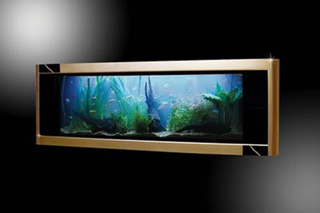 Most expensive fish tank in the world for Thin fish tank