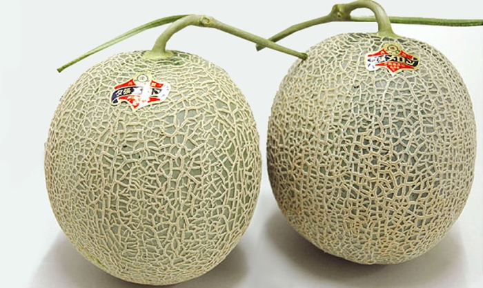 Yubari Japan  city photo : Most Expensive Foods In Japan – Yubari King Melons
