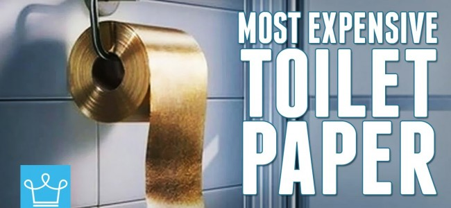 In This Video Alux is Taking a Look at The Most Expensive Toilet Paper in the World