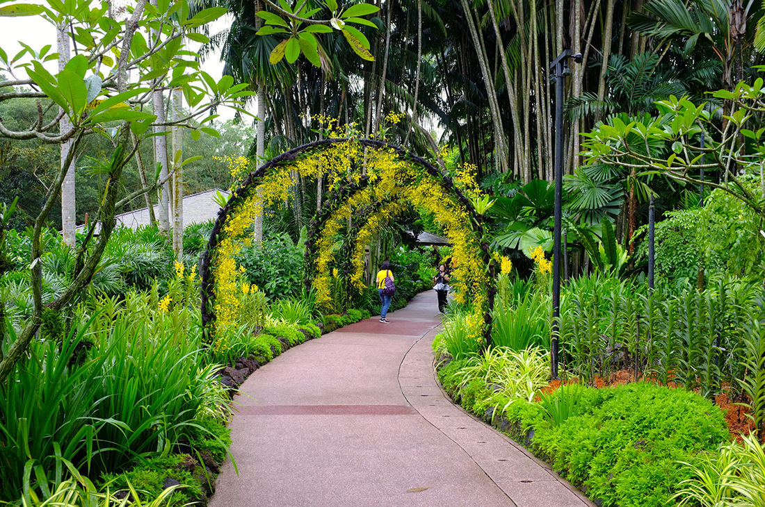 15 Things You Didn't Know About Singapore - Singapore Gardens