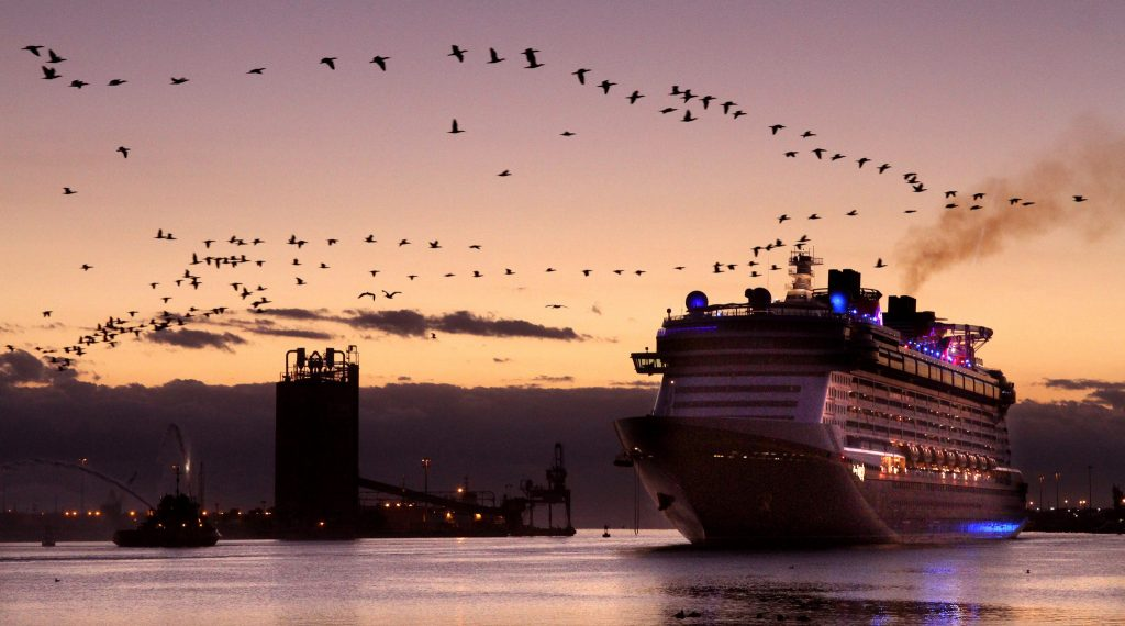 15 Most Expensive Cruise Ships In The World | #5. Disney Fantasy ($950 million)