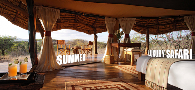 Summer Luxury Safari 2013 | Luxury Travel