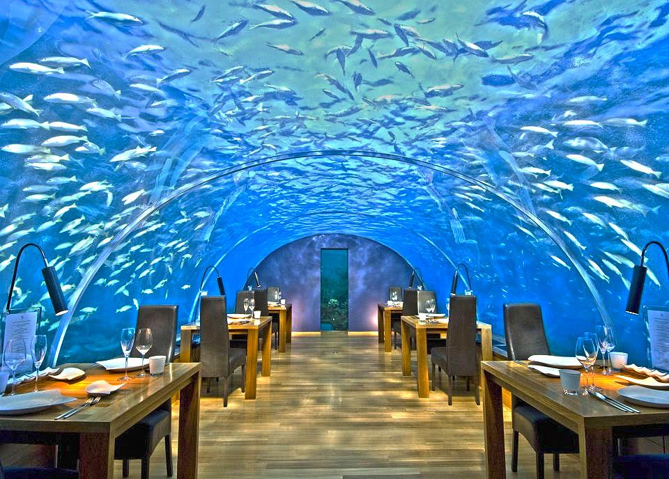 Most Expensive Restaurants In The World: 3.Ithaa, Maldives - $300