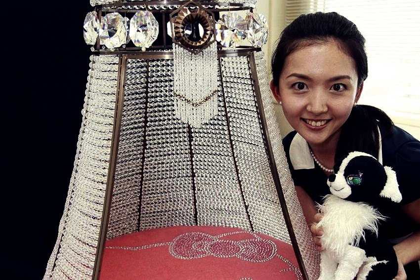 top 10 most expensive pet accessories in the world