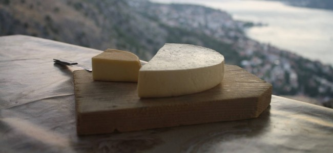 Would you Taste The Most Expensive Cheese in the World?