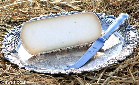 Most Expensive Cheese in the World