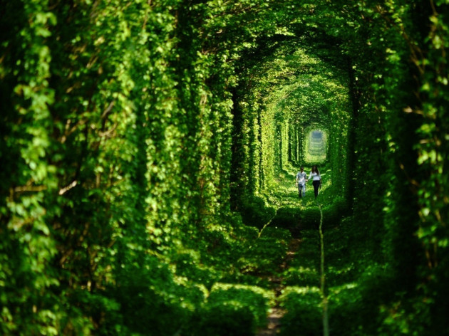 Amazing Abandoned Places Around the World - Part3: Tunnel of Love in Ukraine