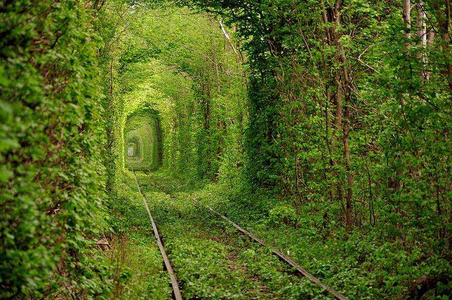 Unreal Looking Places Around The World Tunnel-of-Love-Ukraine