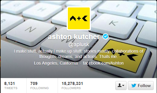 Most Influential Twitter Profiles in 2013