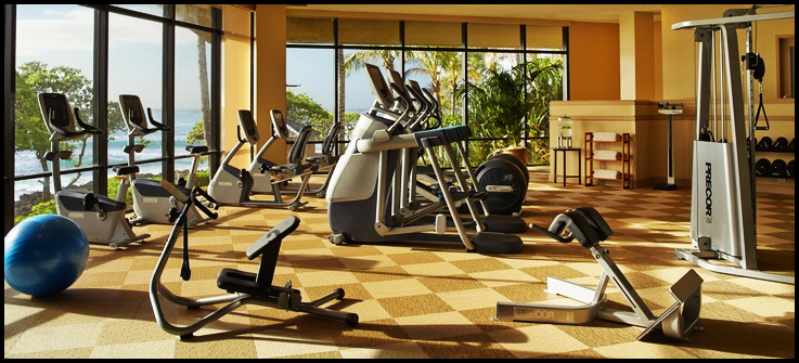 Most Luxurious Hotel Gyms In The World Alux Com