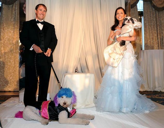Most Expensive Dog Wedding in the World