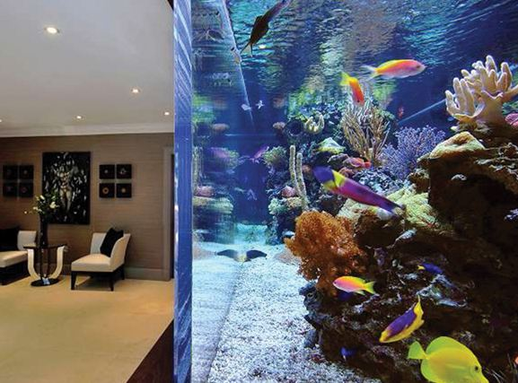 Most expensive Fish Tank in the World 2