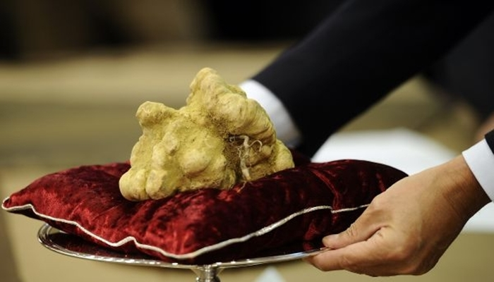 Most Expensive Truffle In The World - $330.000
