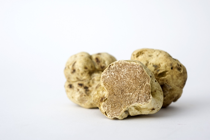 Most Expensive Truffle In The World