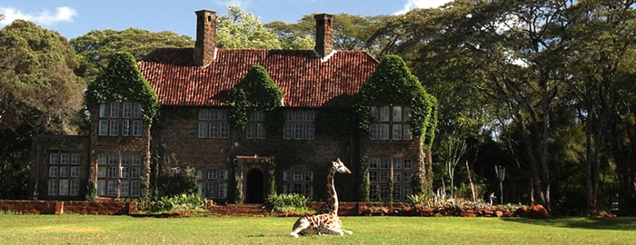 Best Safari Holiday | Giraffe Manor