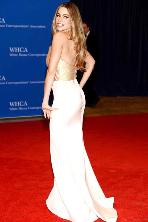 Best.Dressed.Celebrities.at.WHCD.2014.N.6.SOFIA.VERGARA.1