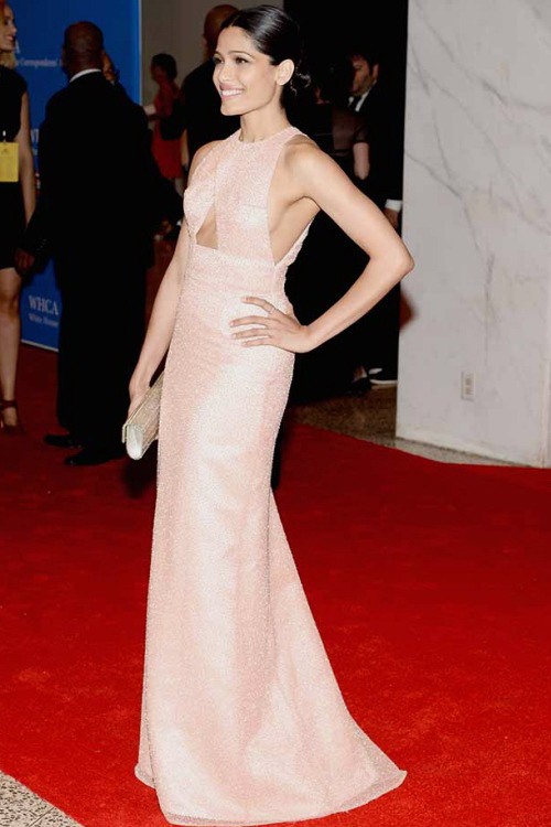 Best.Dressed.Celebrities.at.WHCD.2014.N9.FREIDA.PINTO.1