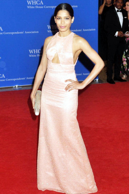 Best.Dressed.Celebrities.at.WHCD.2014.N9.FREIDA.PINTO