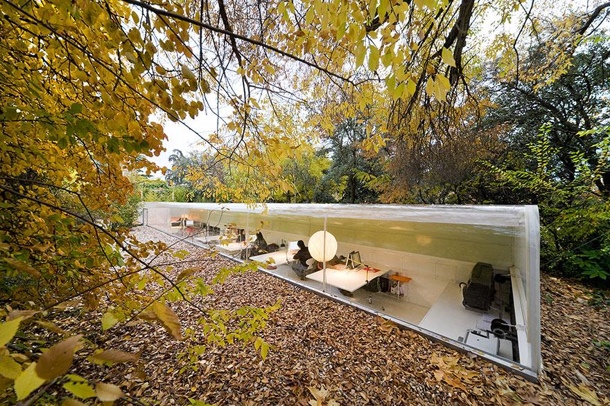 Sustainable Office in the Woods Makes You Rethink Your Career Choice! (1)