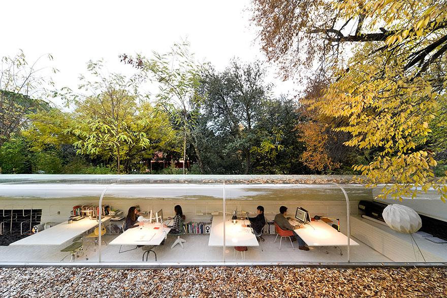 Sustainable Office in the Woods Makes You Rethink Your Career Choice! (5)