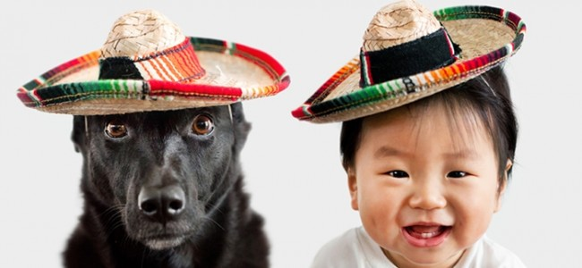 The Most Adorable Relationship Between A Dog And A Baby. These Photos Will Make Your Heart Melt!