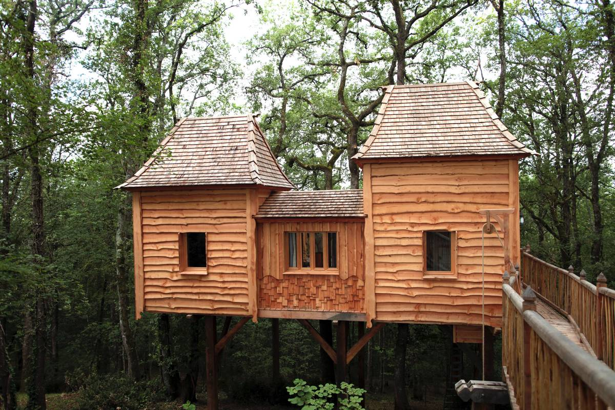 coolest treehouse in the world