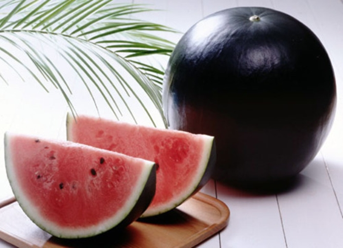10 Most Rarest And Expensive Foods In The World - The Densuke Watermelon