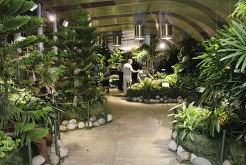 10.The Butterfly Conservatory | 10 Extraordinary Romantic Places in New York
