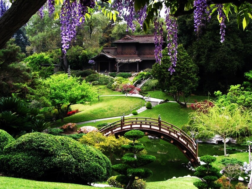 Step into the best botanical gardens in the united states for San francisco botanical gardens