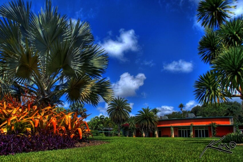 #9 Fairchild Tropical Botanic Garden, Coral Gables, Florida | Step Into the Best Botanical Gardens in the United States! via captainkimo.com