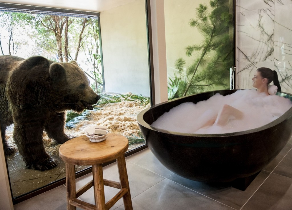 This Hotel in Australia Let's You Take a Bath Next to Bears