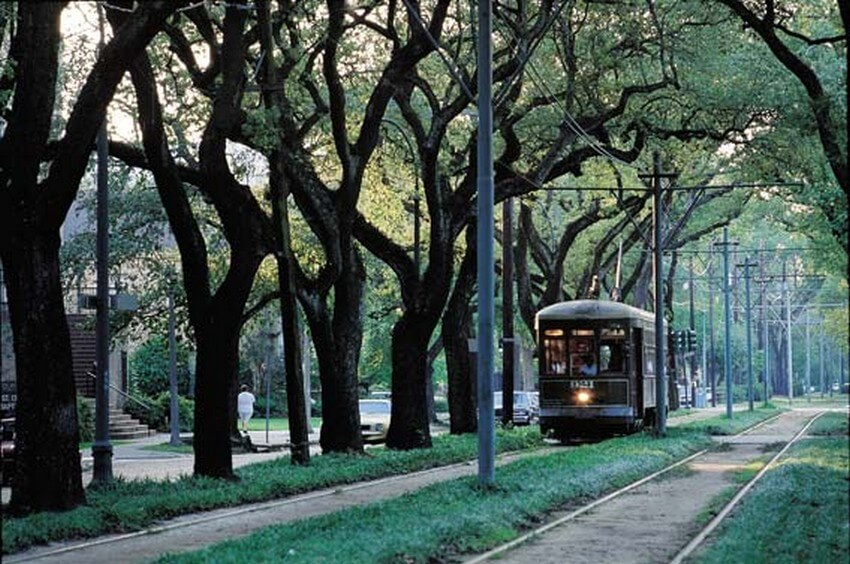 Experience the Birthplace of Jazz at Its Fullest with These 10 Activities | Experience the New Orleans Streetcars