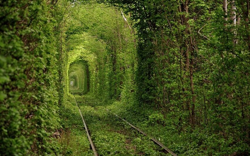 You Have to Visit These Marvelous Places to Believe They Actually Exist | Tunnel of Love, Ukraine