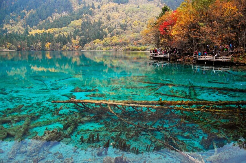 You Have to Visit These Marvelous Places to Believe They Actually Exist | Five Flower Lake, China