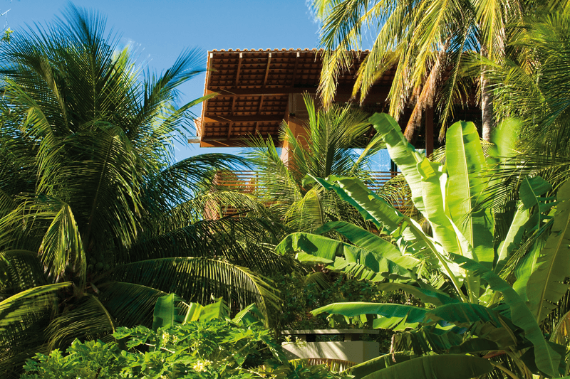 Casa Tropical Exotic Luxury Project - EALUXE | via Camarin Architects