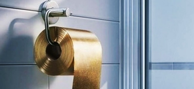 Most Expensive Toilet Paper in the World