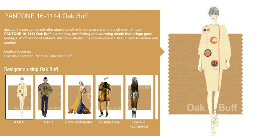 Pantone's Fall Colors Bring Back the '70s | Image Source: holtermanndesign.com