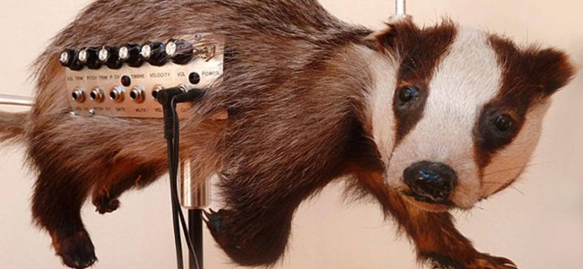 The strangest music instruments in the world