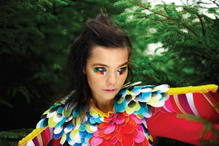 Style Icon Bjork Is Honored at MoMA This March! | Image Source: www.bjork.fr