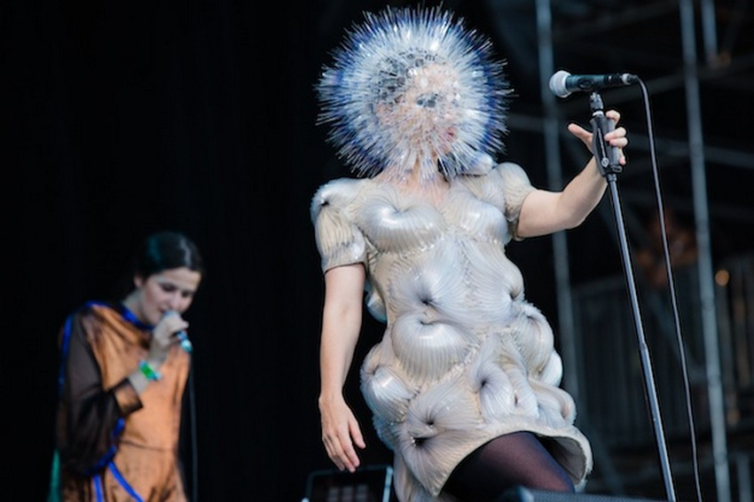 Style Icon Bjork Is Honored at MoMA This March! | Image Source: www.craveonline.com