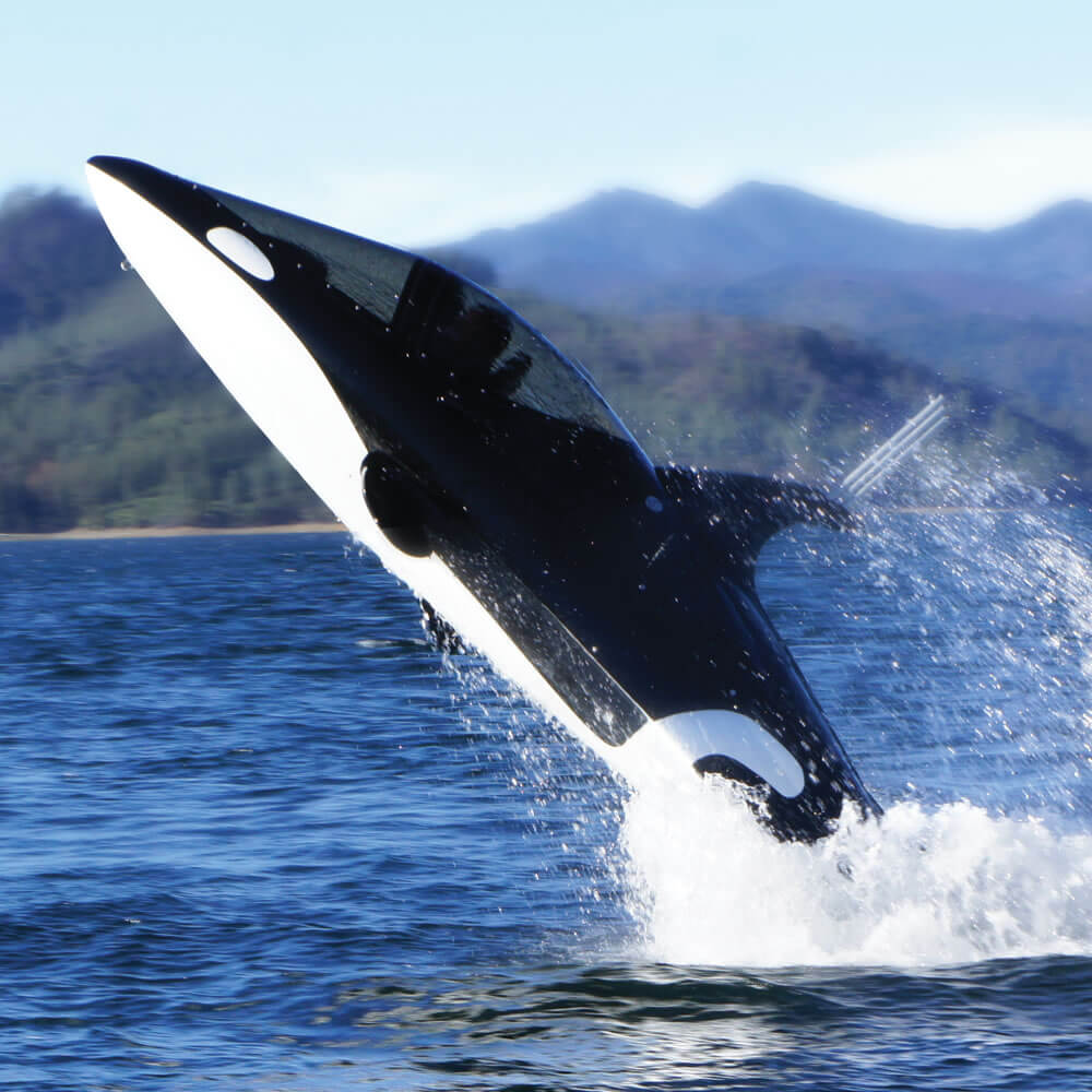#9 Killer Whale Submarine   Most Expensive Toys For Adults   Image Source: hammacher.com