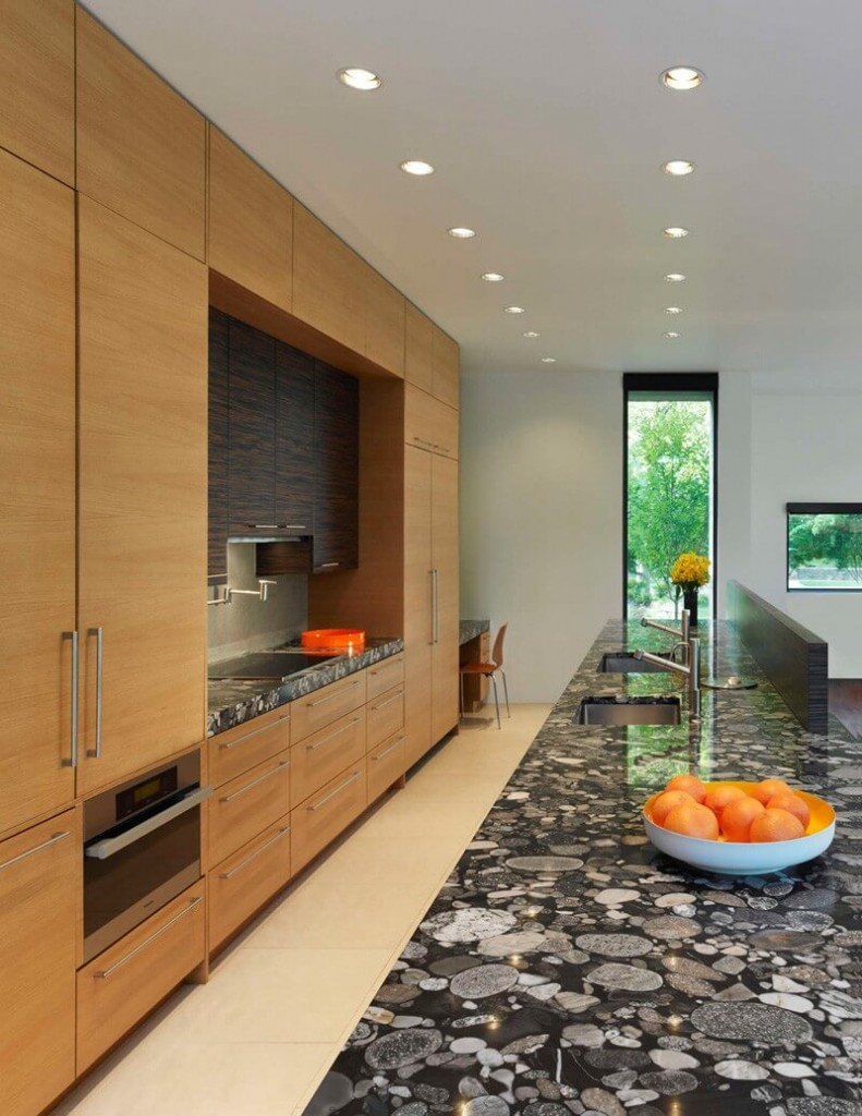 Brandywine House Modern Luxury Home - EALUXE 13
