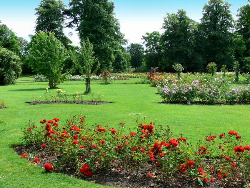 These 5 Magical Places Are London's Hidden Treasures for True Travelers | Morden Hall Park