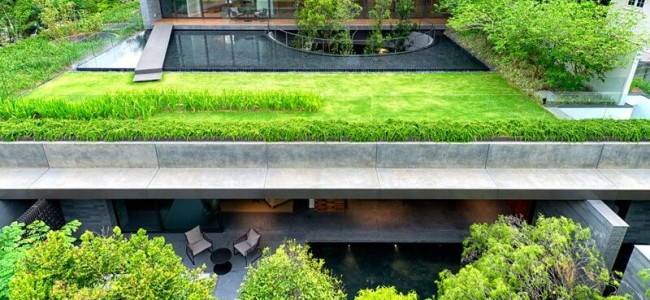 The Wall House Is A Modern Luxury Home With An Amazing Landscape Design