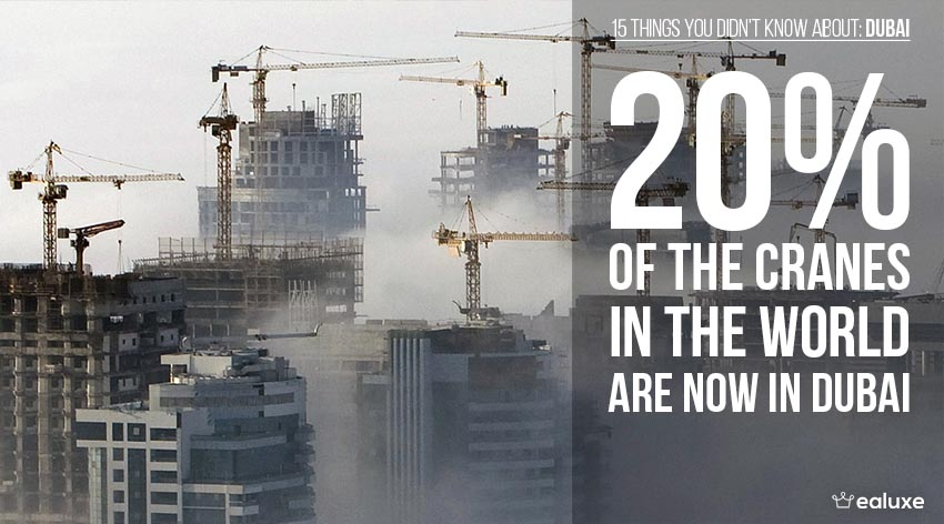 15 things you didn't know about dubai cranes 20 percent world wide facts ealuxe