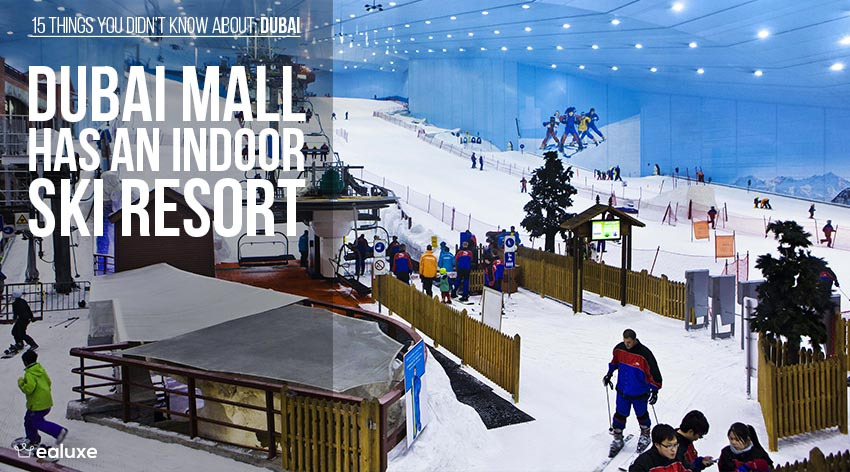 15 things you didn't know about dubai dubai mall ski resort facts ealuxe