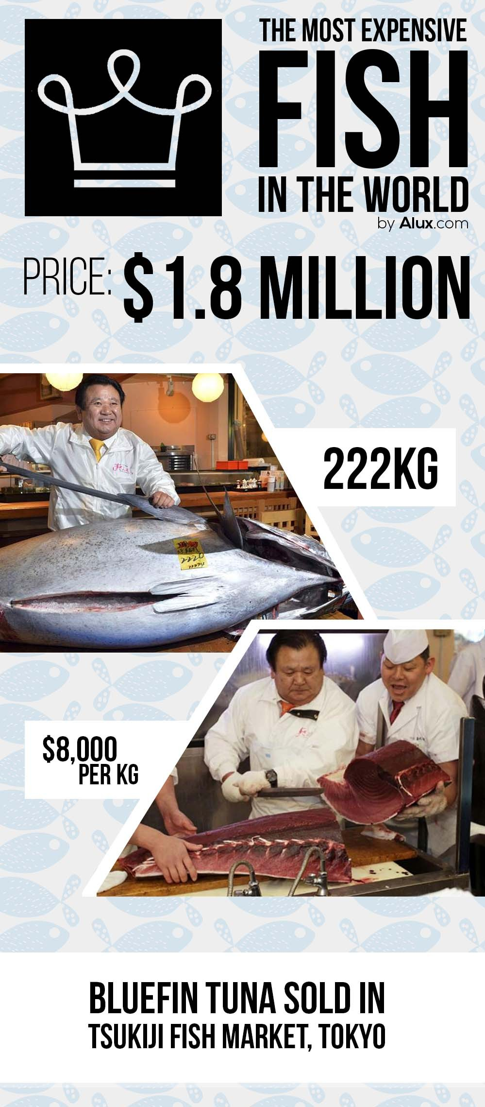 most expensive fish in the world ealuxe alux